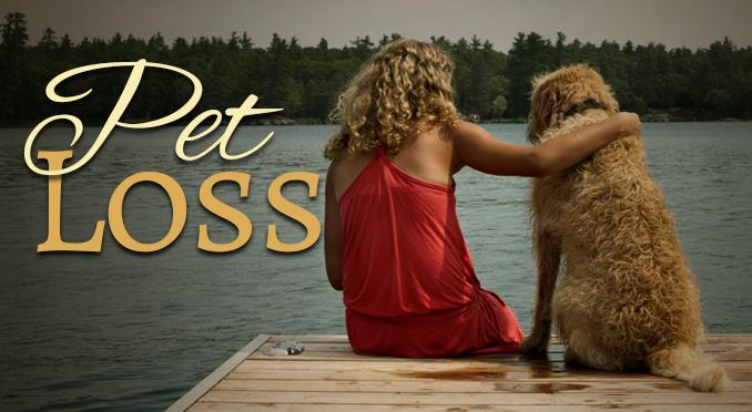 Pet Loss Services by Beloved Pet Cremations, LLC